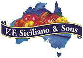 VF Siciliano & Sons Logo